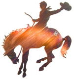 Bronc rider metal wall art