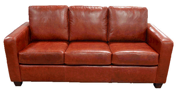 Transitional Genuine Full Grain Leather Sofas and Couches